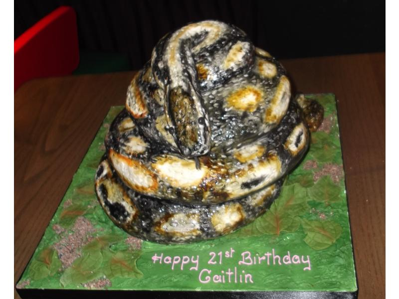 Snake Cake in chocolate sponge for Caitlin's 18th birthday in Burscough, copied from pictures of her pet snake