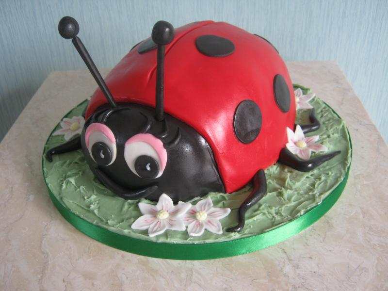 Ladybird enthusiast Claire in Blackpool from Madeira sponge