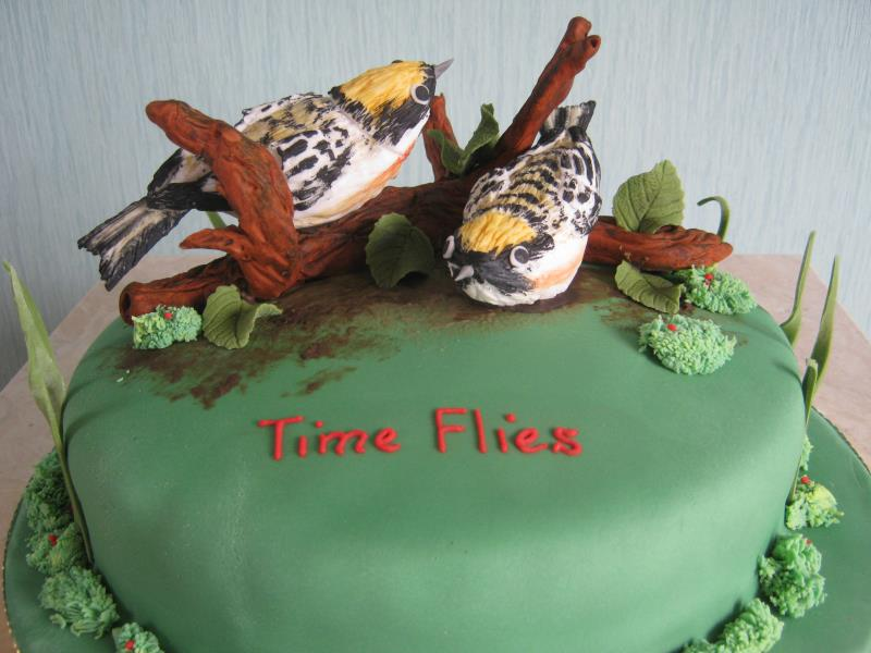 Chestnut sided Warblers for a bird lover on a her spcial birthday in Cleveleys made from chocolate sponge.