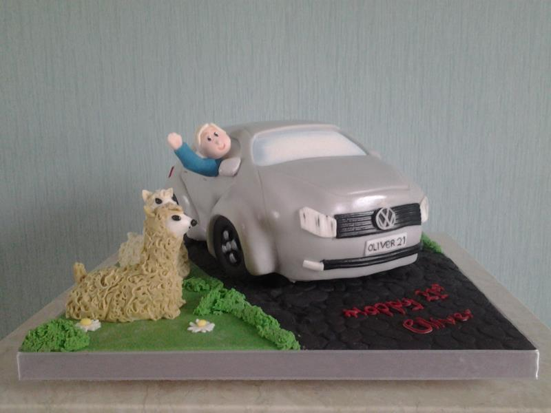 VW Polo with llamas in Madeira for Oliver's 21st birthday in Blackpool