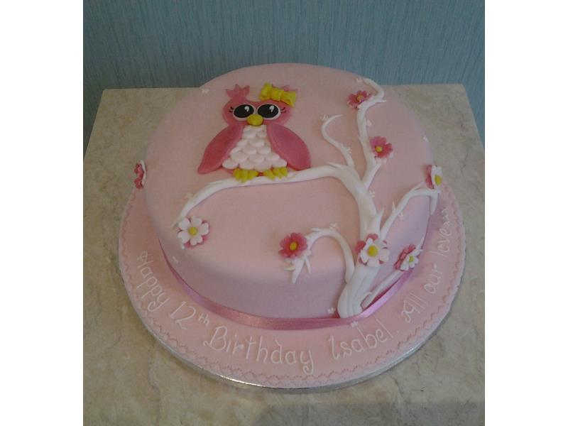 Owl on a Branch in pink for 12 year old Isabel in Thornton, made from chocolate sponge