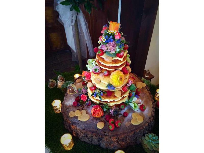 Nature themed wedding cake in sponge with handmade shortbread, fresh fruit and fresers with log for celebration at Great Hall of Mains